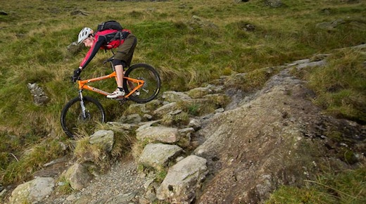 Dave Flynn Orange Crush CycleActive
